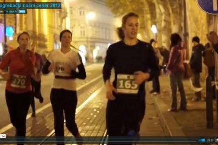 Video izvještaj 2012.